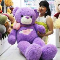 Gấu teddy I Love You tím (1m4,1m6)